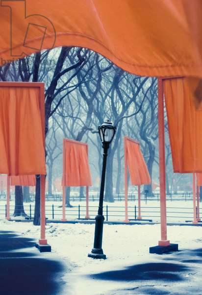 THE GATES -  Central park NYC , 2005 (photo)