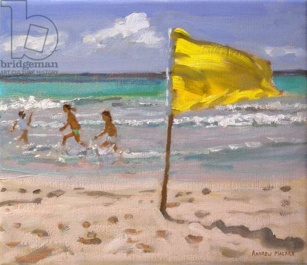 Yellow Flag, Barbados, 2010 (oil on canvas)