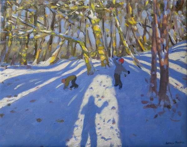 Winter Elvaston Castle, 2008 (oil on canvas)