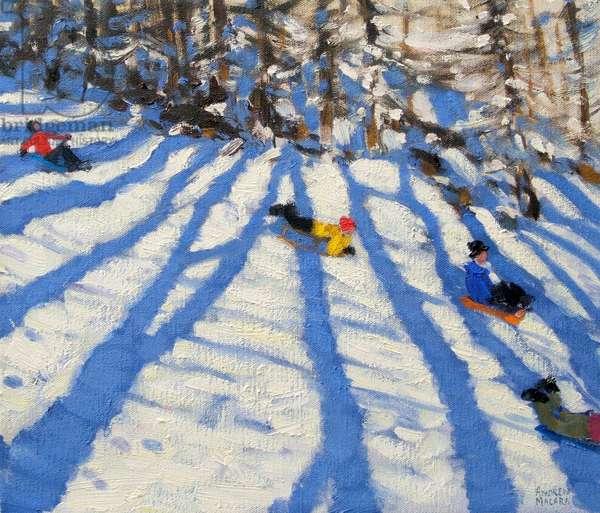 Tree shadows, Morzine (oil on canvas)