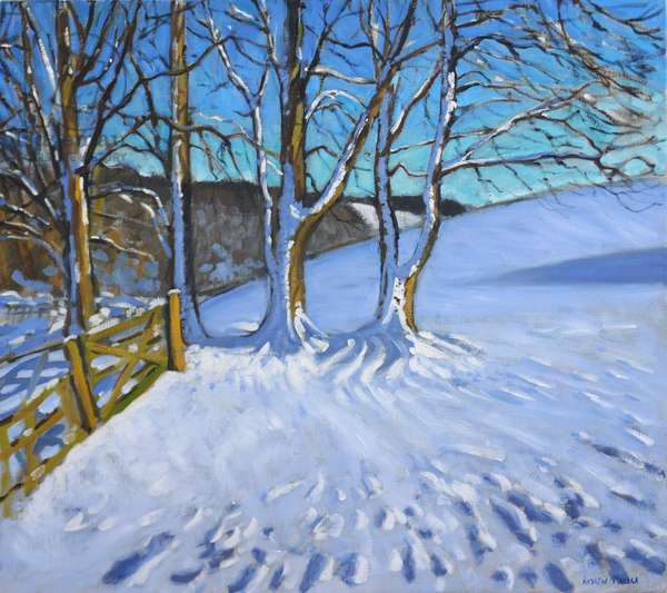 Gate and trees,Winter,Dam Lane,Derbyshire,2013,(oil on canvas)