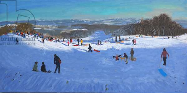 Allestree Park Derby, 2013 (oil on canvas)