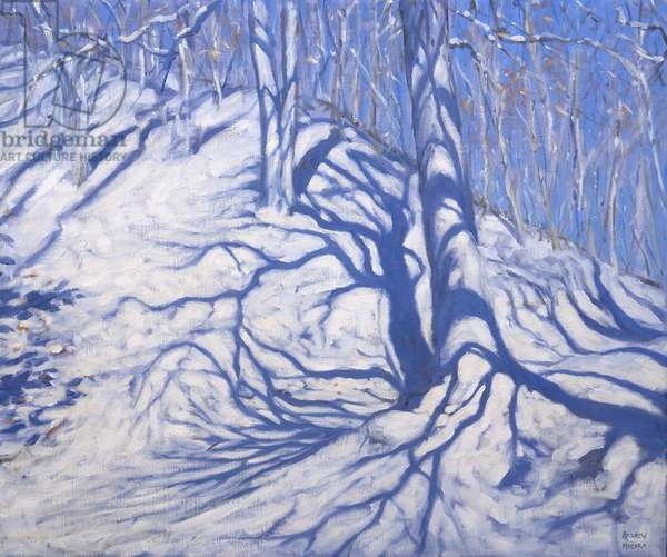 Winter Woodland, near Courcheval, 2008 (oil on canvas)
