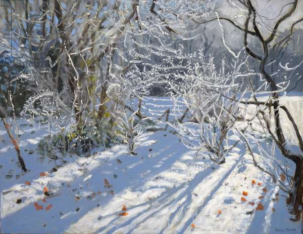 Hoar Frost, 2011 (oil on canvas)
