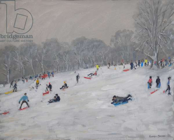 Winter, Darley Park, 2009 (oil on canvas)