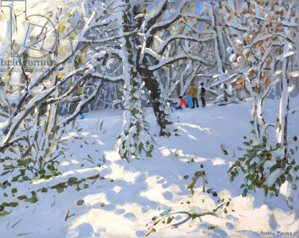 "Christmas sledging in Allestree Woods,16x20"" ,2013 (oil on canvas)"