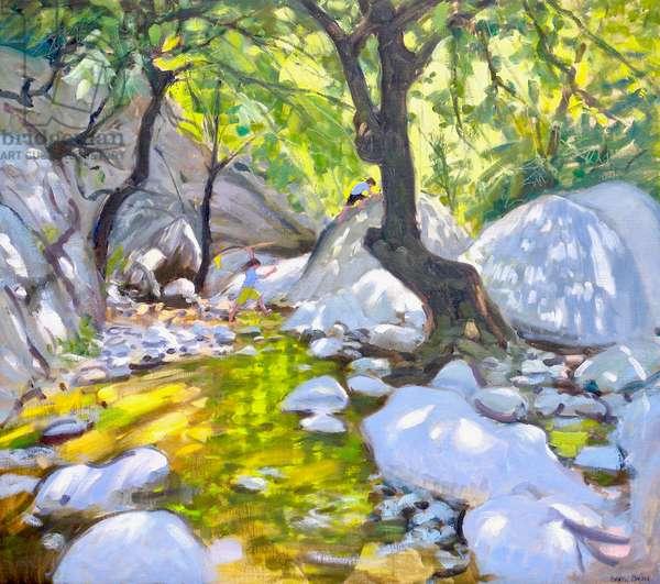 Mountain stream,Lefkas,Greece, 2009 (oil on canvas)