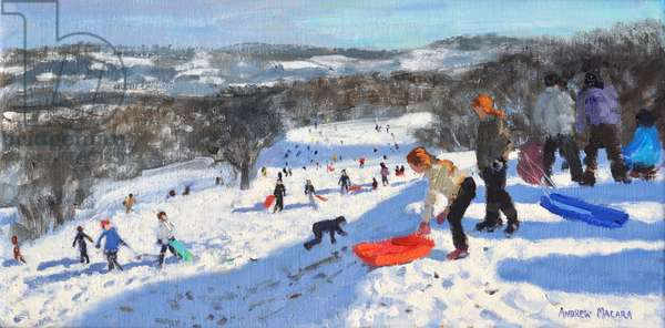 The red sledge, Allestree Park,Derby, 2016,