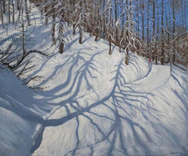 Fir Tree Shadows, Tignes, 2009 (oil on canvas)