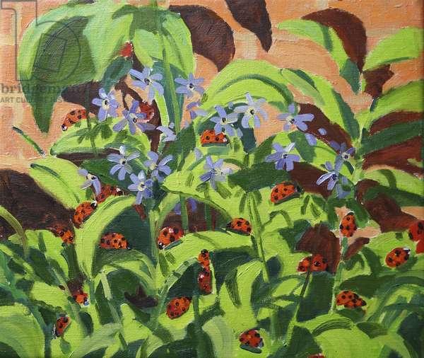 Ladybirds,2013 (oil on canvas)