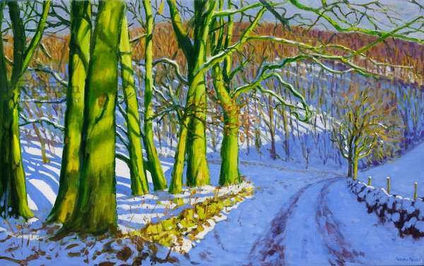 Green Trees,Winter;Dam Lane;Derbyshire,(oil on canvas)