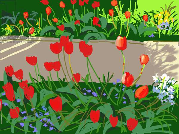 Tulips and Ladybirds,2017,(iPad painting)
