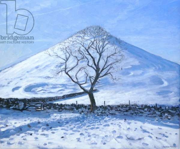 Hill and Tree, Derbyshire, 2008 (oil on canvas)