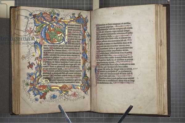 Psalter with Sarum use calendar, Fol 72 verso fol 73 recto, c.1425-75 (ink, paint & gold on vellum)