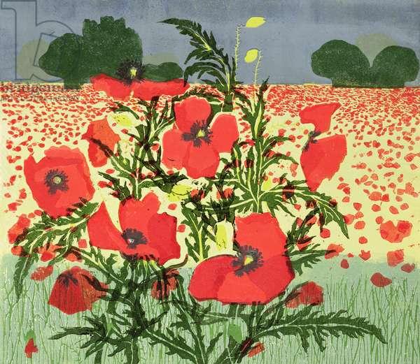 Poppies (linocut)