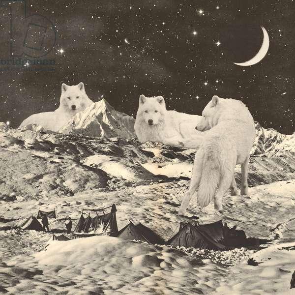 Three Giant White Wolves on Mountains
