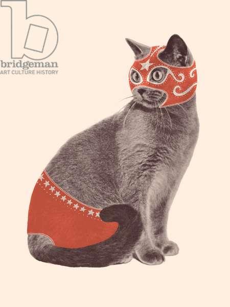 Cat Wrestler