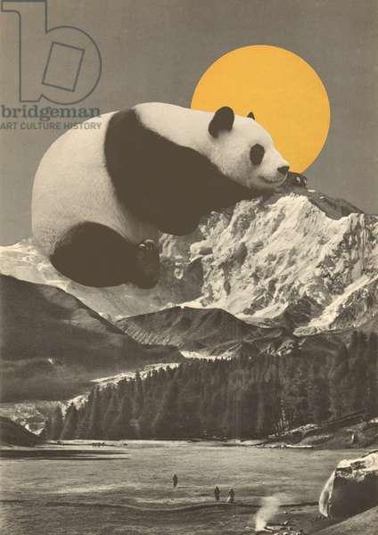 Panda's Nap into Mountains