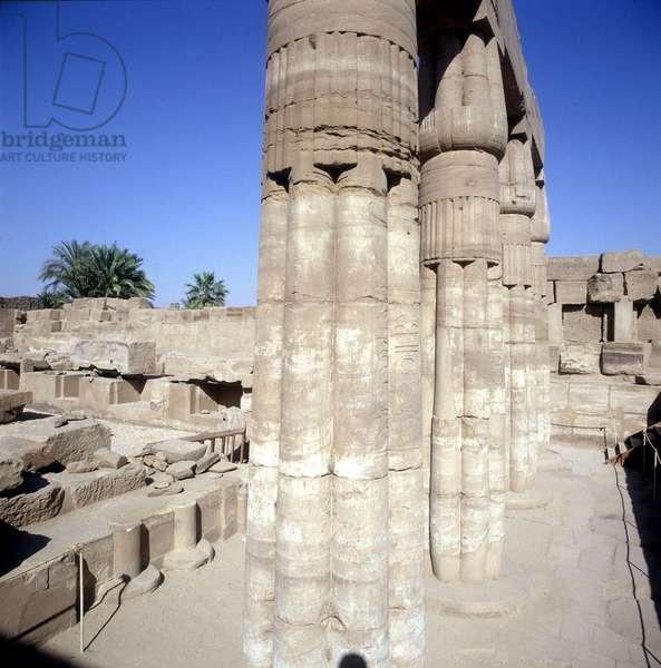 Karnak: Temple of Amon, Botanical Garden - overview