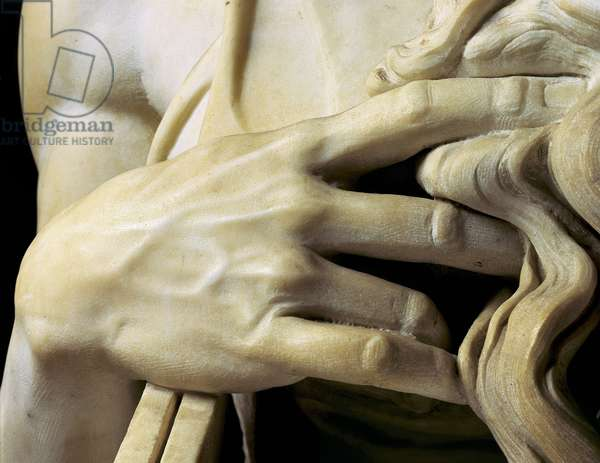 Detail of the hands and beard of Moses. Sculpture by Michelangelo Buonarroti called Michael Angel (Michelangelo or Michelangelo, 1475-1564). Mausoleum of Jules II. 1513, San Pietro in Vincoli, Rome.