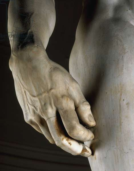 David seen from the front, detail of the right hand. Renaissance sculpture by Michelangelo Buonarroti called Michel Ange (Michelangelo or Michelangelo, 1475-1564), 1501-1504. Galleria dell'Accademia, Florence.