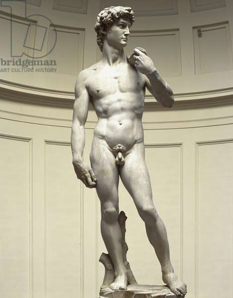 David. Sculpture by Michelangelo Buonarroti called Michael Angel (Michelangelo or Michelangelo, 1475-1564), carved between 1501 and 1505. Florence, Academy Gallery.