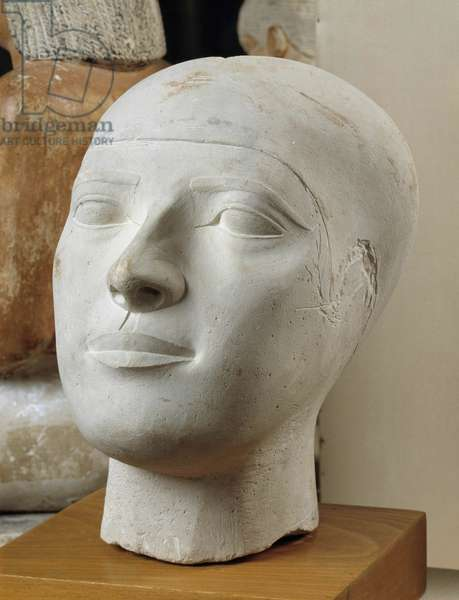 Egyptian antiquite: limestone reserve head (razed and natural size) of a member of the Chephren family (or Khephren) (2558-2553 BC), 4th dynasty, Ancient Empire. Cairo, Museum of Egypt