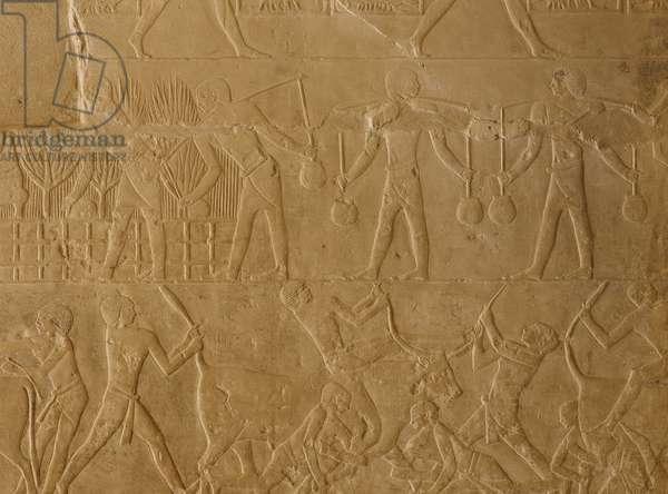 Saqqara (Sakkara), Mastaba de Mereruka: Irrigation of crops