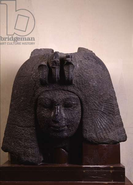 Queen Tiy - Museum of Egypt, Cairo