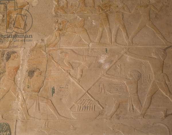 Saqqara (Sakkara) Mastaba de Ptahotep: Wine preparation in Egypt - photography, Jemolo