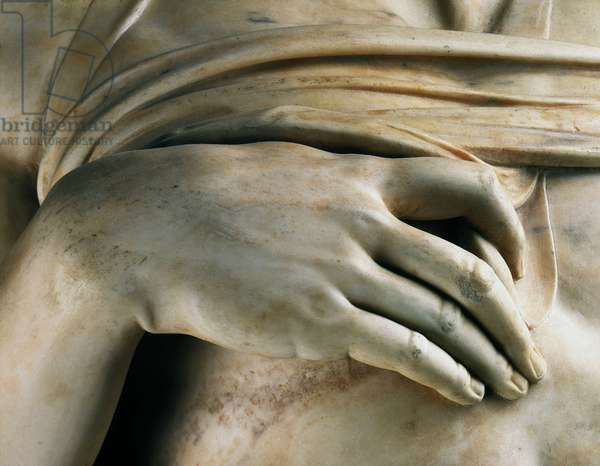 Captive, says the dying slave (detail of the hand), 1513-1514. Sculpture of the Renaissance by Michelangelo Buonarroti called Michel Ange (Michelangelo or Michelangelo, 1475-1564). Musee du Louvre, Paris.