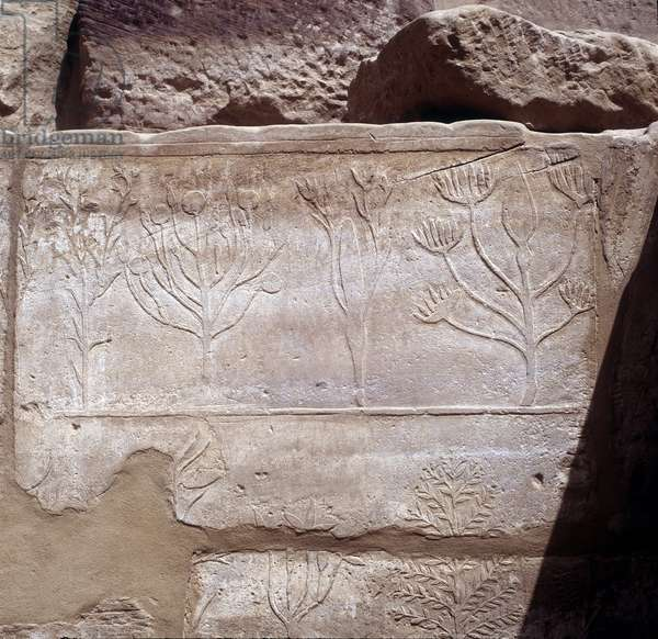 Karnak: Temple of Amon, Botanical Garden - details