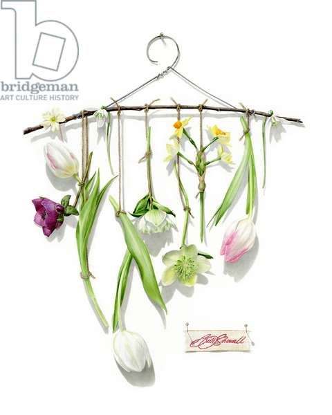 The Dressmakers Flowers