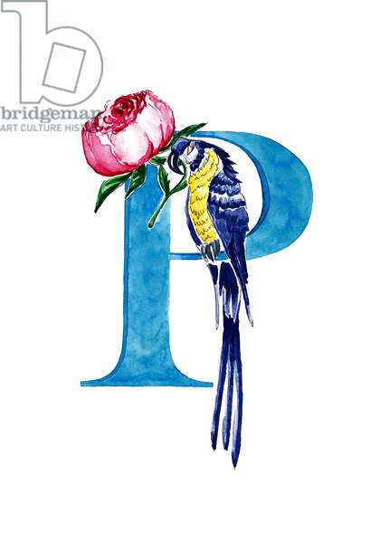 P Peony Parrot, 2019, (watercolour and ink)