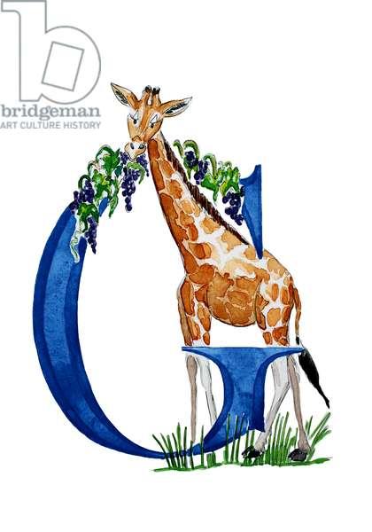 G Giraffe munching Grapes, 2018, (watercolour and ink)