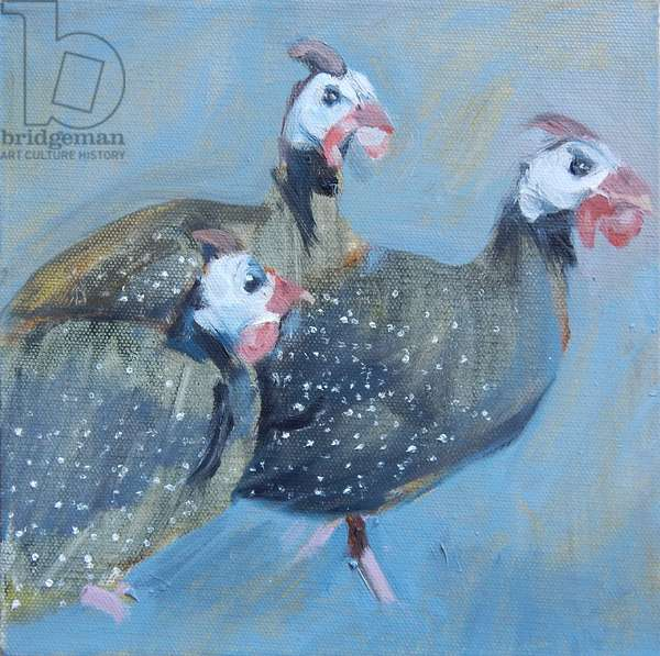 Guinea Fowl One, 2014, (oil on canvas)