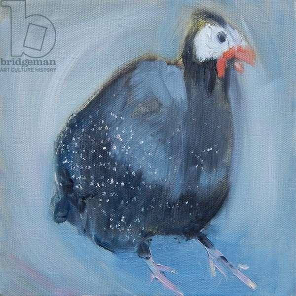 Guinea Fowl Three, 2014, (oil on canvas)