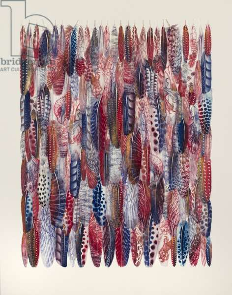 Wall of Feathers, 2018 (printed and collaged feathers)