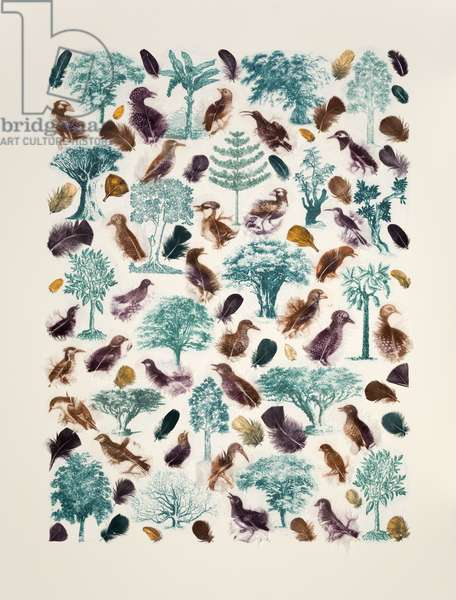 Forest of Birds, 2015, mixed media
