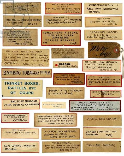 Museum Labels, 2005 (photograph)
