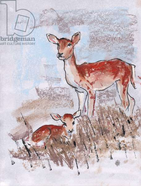 Doe with Fawn, 2014, (pastel)