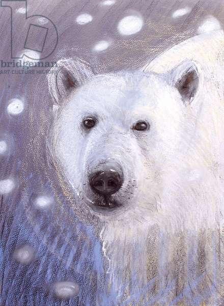 Polar Bear, 2015, (pastel)