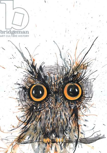 Wide eyed Owl, 2012, (watercolour)