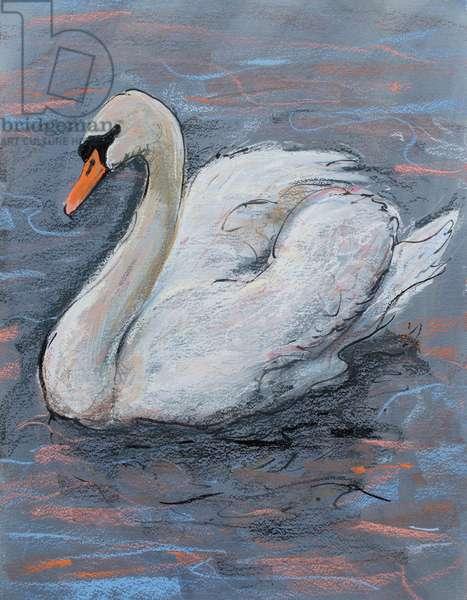 Swan on Lake, 2014, (pastel)