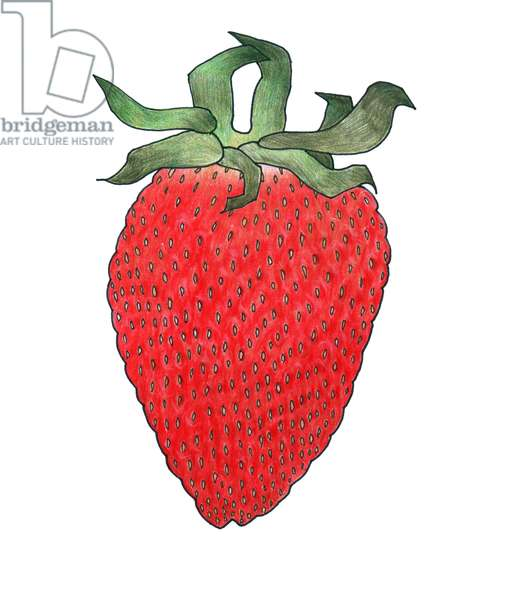 Strawberry 1, 2013, (coloured pencil)