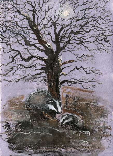 Badgers in the Moonlight, 2014, (pastel)