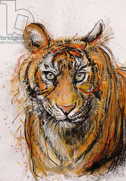 Tiger, 2013, (pastel)