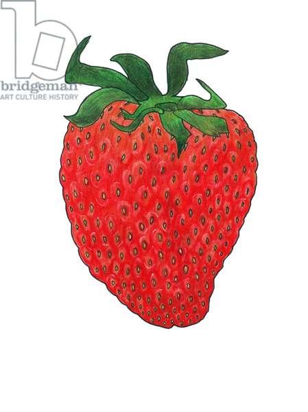 Strawberry 3, 2013, (coloured pencil)