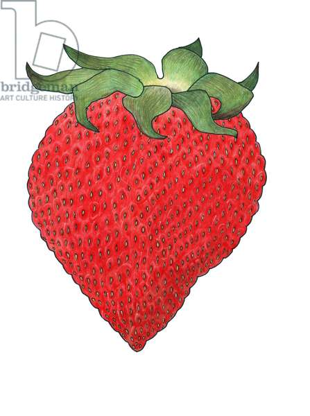 Strawberry 5, 2013, (coloured pencil)