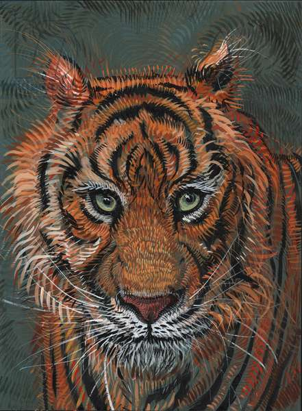 Tiger 2, 2014, (gouache on paper)